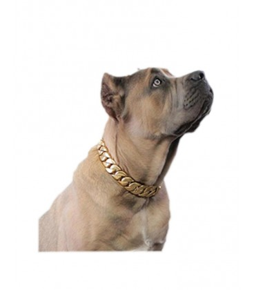 GoldBeast Collar
